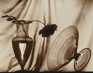 Michel Graniou, photogramme